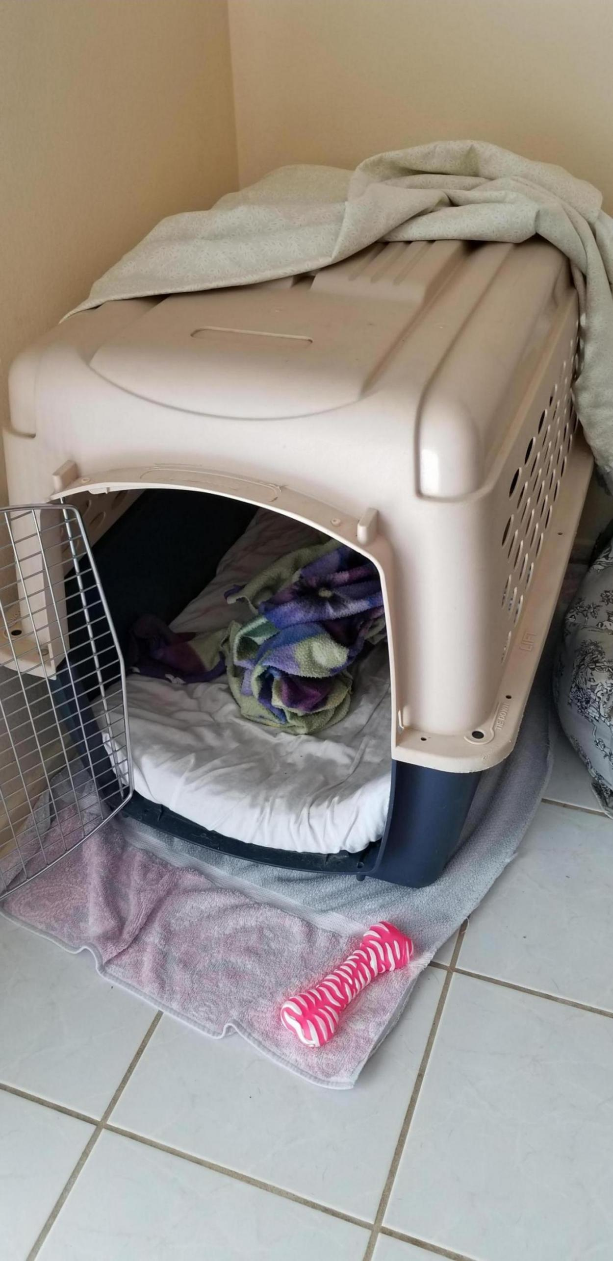 Playpen design flaw- IMPORTANT-20190514_150942_1562875647695.jpg