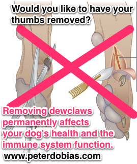 dew claws-dewclaws.png